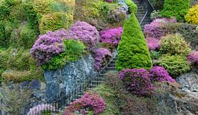 Oceania Cruises stairway in Butchart Gardens Vancouver British Columbia Canada