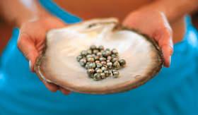 Paul Gauguin cluster-of fresh black pearls