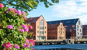 Princess Cruises old town of Klaipeda. Lithuania