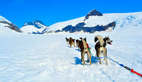 Regent Seven Seas Cruises musher camp on top of Mendenhall Glacier in Juneau ice field