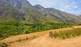 Tulbagh Valley in South Africa