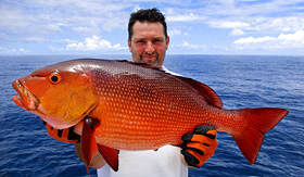Royal Caribbean fisherman holding huge Red Snapper