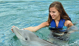 Royal Caribbean girl swimming with dolphin Bermuda