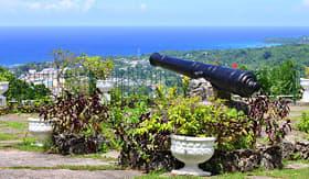Royal Caribbean Shaw Park Botanical Gardens Ocho Rios Jamaica