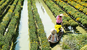 Viking River Cruises Floating flower field in Sa Dec, Dong Thap, Vietnam