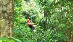 Zipline in Costa Rica - Windstar Cruises