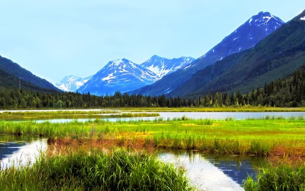 Cruises from Whittier (Anchorage), Alaska from $669*