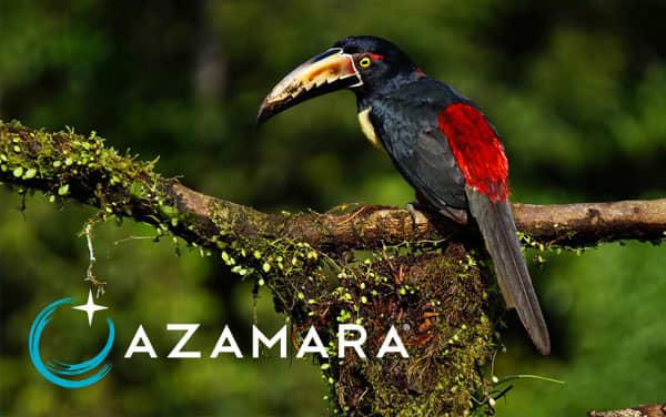Azamara Panama Canal cruises