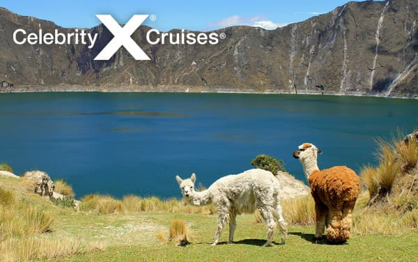 Celebrity South America cruises from $1,399*
