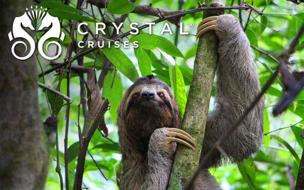 Crystal Panama Canal cruises from $2,916*