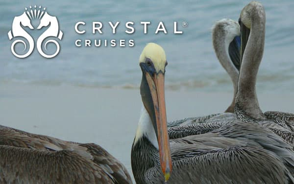 Crystal Mexican Riviera cruises