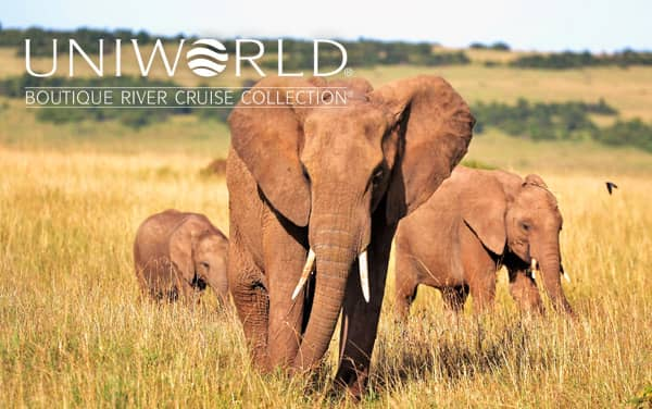 Uniworld Africa cruises from $5,499*