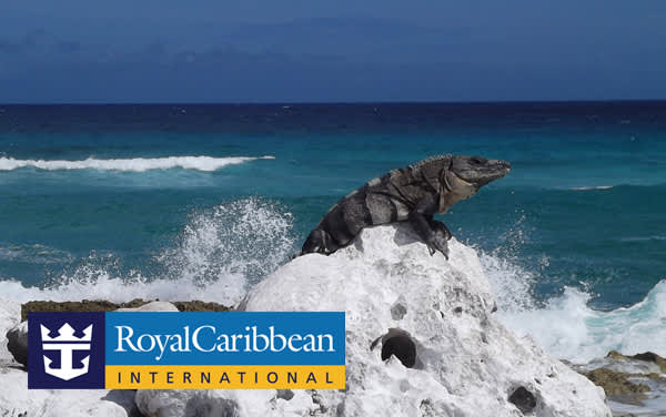 Royal Caribbean Western Caribbean cruises from $275*