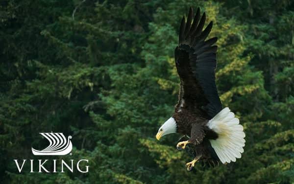 Viking Ocean Alaska cruises from $4,799*