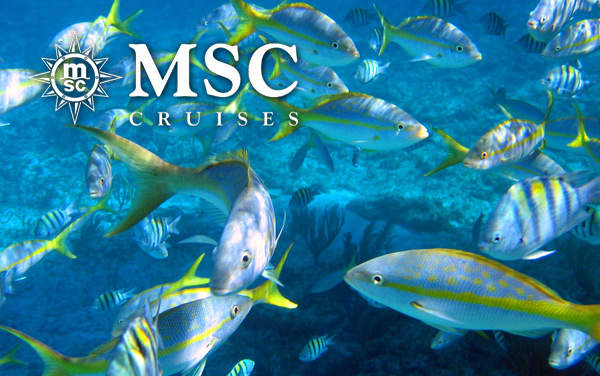 MSC Cruises Bahamas cruises from $109*