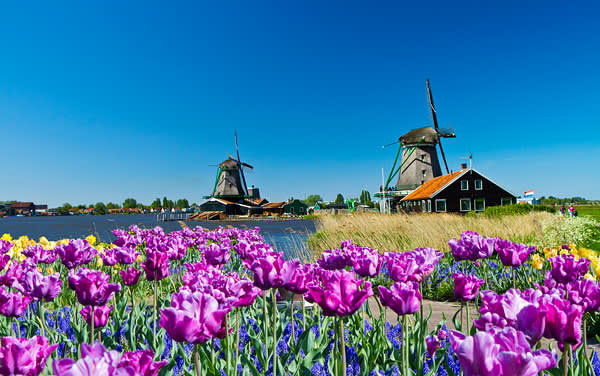 Viking Ocean Cruises-Amsterdam, The Netherlands