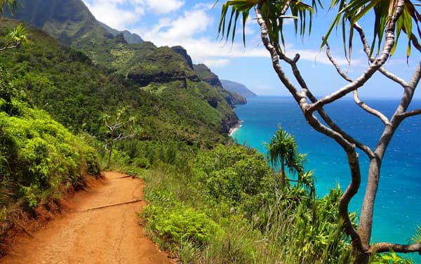 Norwegian Cruise Line-Hawaii Cruisetours