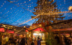Visit world famous Christmas Markets in Germany