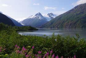Alaska Cruising in July