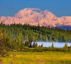 Alaska Cruisetour to Denali