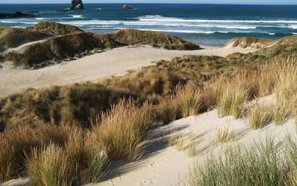 Crystal Ocean Cruises-Port Chalmers (Dunedin), New Zealand