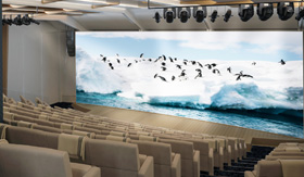 The Aula showing a nature movie