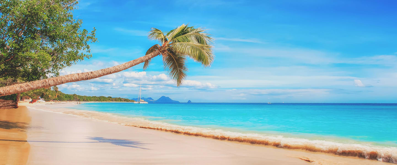 Caribbean cruising from US Summer 2021