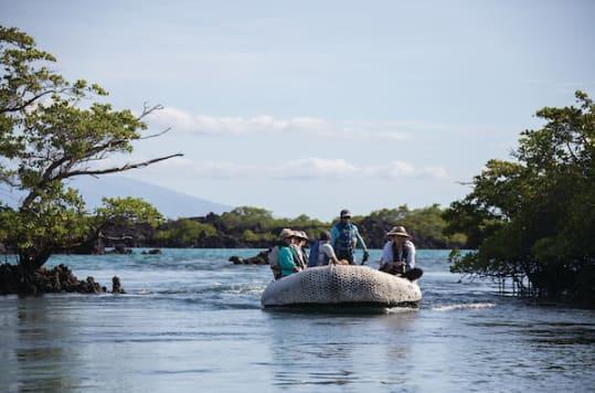 Zodiac tour in Galapagos