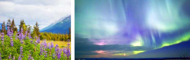 Cruisetour to Fairbanks