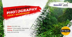2 Days Rainforest Photography Tour + Workshop
