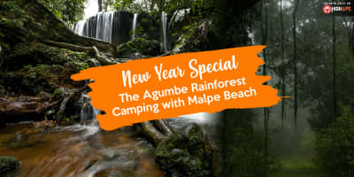 New Year Special: The Agumbe Rainforest Camping with Malpe Beach