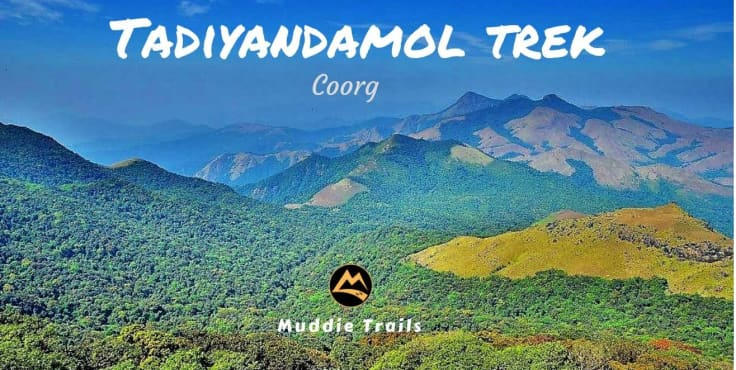 Coorg Tadiyandamol Peak Trek, Iruppu Waterfalls | Muddie Trails