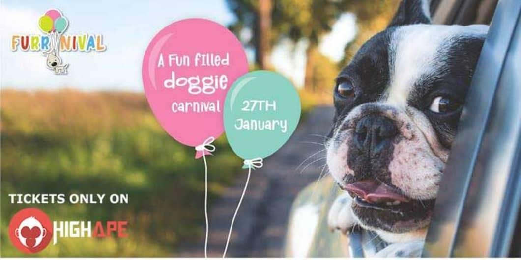 Furrnival - Doggie Carnival