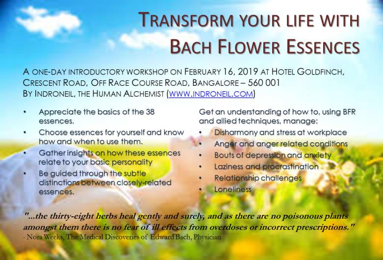 Transform your life with Bach Flower Essences