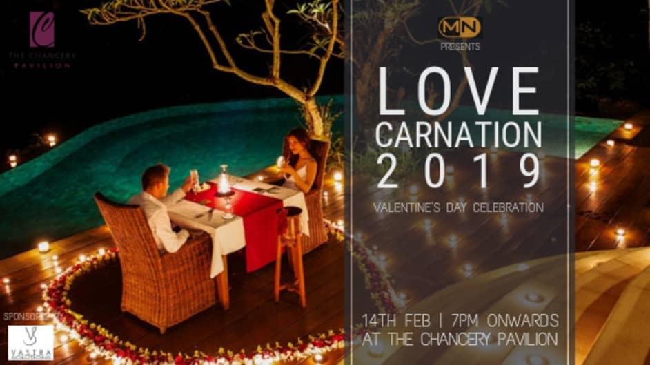 LOVE CARNATION - A Grand Valentine Celebration