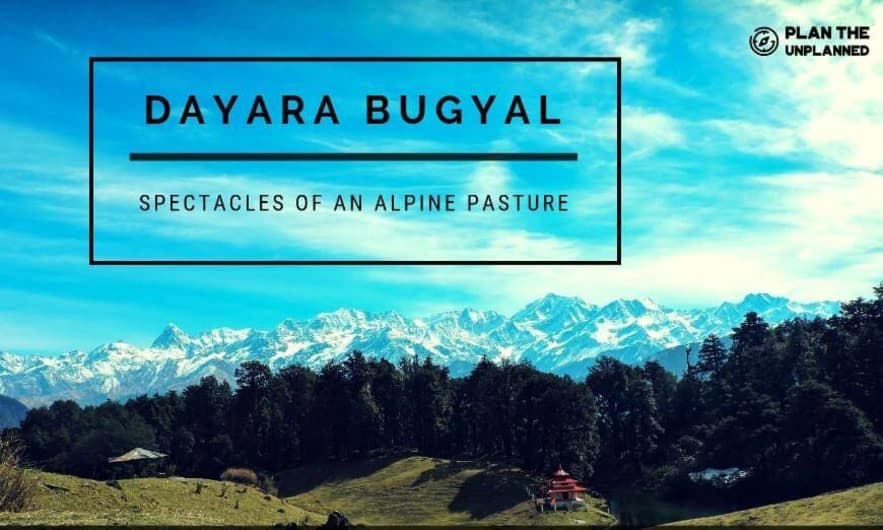 Dayara Bugyal Trek   Plan The Unplanned