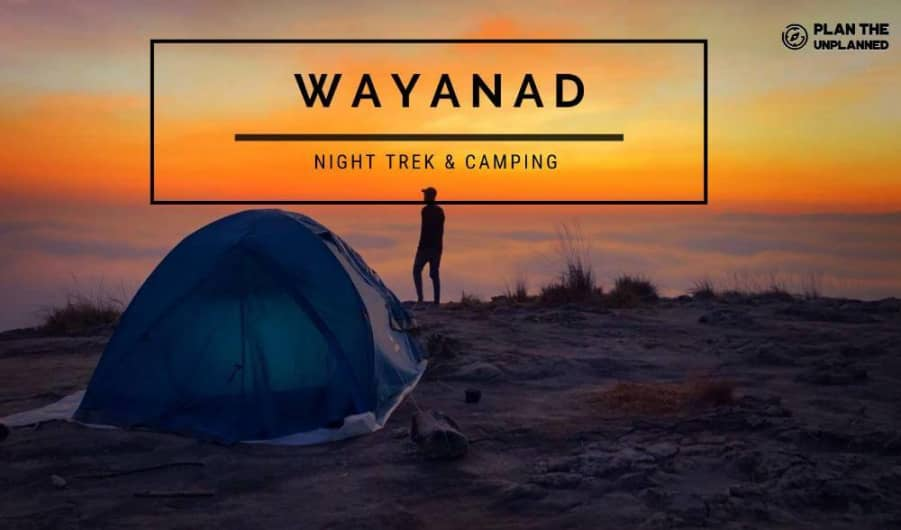 Wayanad Night Trek & Camping | Plan The Unplanned