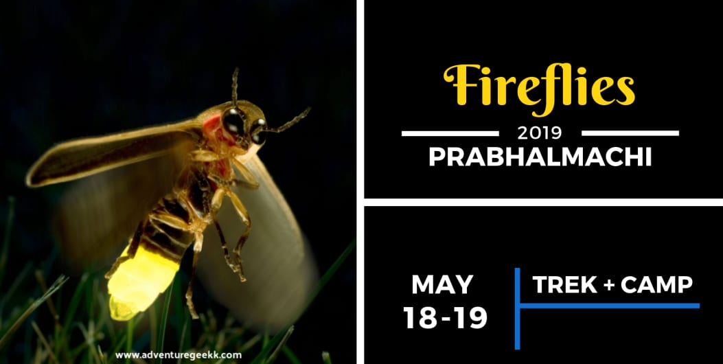 Fireflies Special Trek And Camping - Prabhalmachi