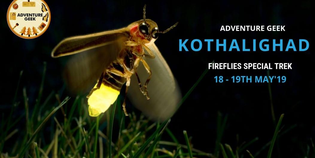 Fireflies Special Trek To Kothaligad