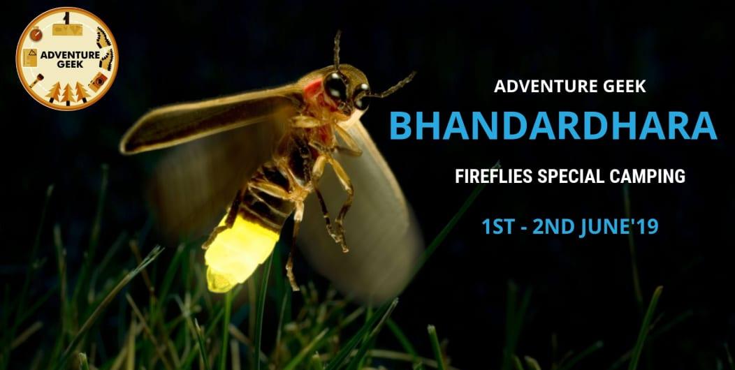 Fireflies Special Camping at Bhandardara