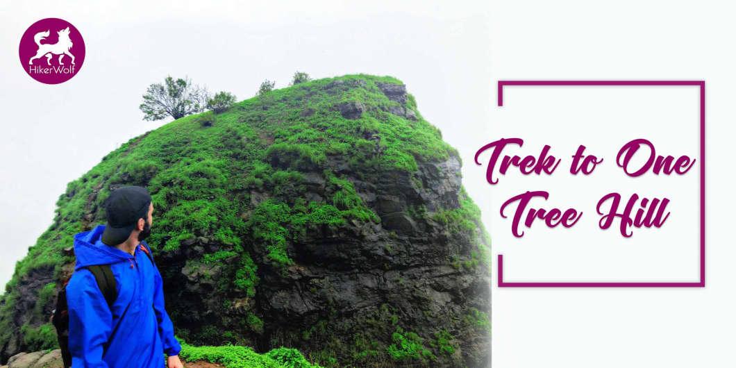 HikerWolf - Trek to One Tree Hill