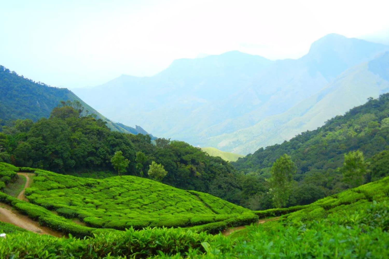 Kerala Tour Sightseeing 3