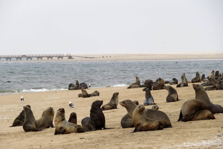 Namibia Tour Sightseeing 3