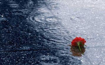dropped in the rain 573x420 k0q8gf krxqon Αναγνώσματα