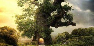 tree house x1ijar rema