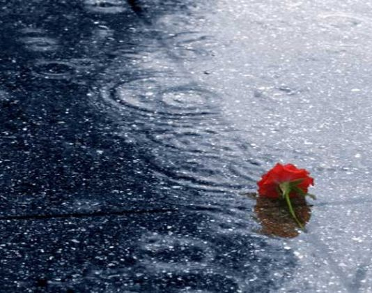dropped in the rain 573x420 k0q8gf krxqon rema