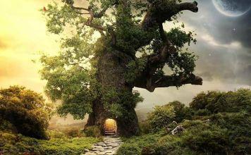 tree house x1ijar Αναγνώσματα