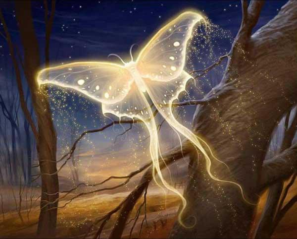 soul butterfly eezonw Ενοχές σου αφήνουν όλα εκείνα που δεν έζησες!