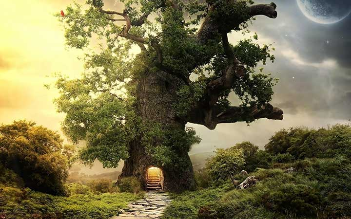 tree house x1ijar Μπορούμε να μετατρέψουμε την απελπισία σε ελπίδα..