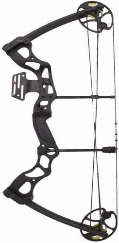 Best Hunting Bows for Beginners